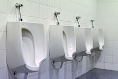 Row of urinals. Stock Image