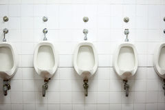 Row of urinals in toilet Royalty Free Stock Images