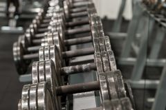 Row of used metal dumbbells on a rack in a gym. Sport and fitness equipment. And accessories. Set of dumbbels Stock Image