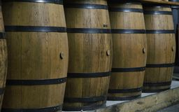 A row of vertical hooped wooden barrels. A row of vertical hooped wooden wine barrels in a London bar royalty free stock images