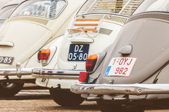 Row of vintage Volkswagen Beetles from the seventies. DEN BOSCH, THE NETHERLANDS - JANUARY 8, 2017: Row of vintage Volkswagen Beetles from the seventies in Den Stock Image