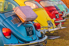 Row of vintage Volkswagen Beetles from the seventies Royalty Free Stock Images