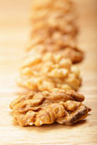 Row of walnuts Stock Images