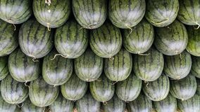 Row of watermelon for sale in the local market Stock Image