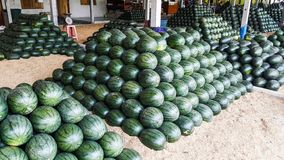 A lot of watermelon in the local marke Royalty Free Stock Image