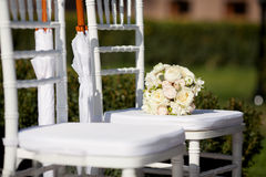 Row of wedding chairs. Outdoors Stock Photography