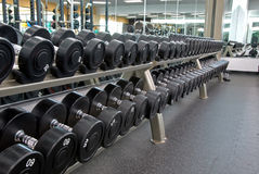 Row of weights Royalty Free Stock Images