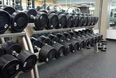 Row of weights Stock Image