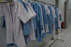 Row of White and Blue Laboratory Coat royalty free stock image