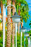 Row of white streetlights and palm trees Royalty Free Stock Photography