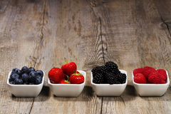Row of wild berries in bowls stock photography