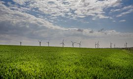 Row of win turbines in field of corn royalty free stock photography
