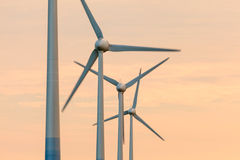 Row of wind turbines during sunset Stock Photography