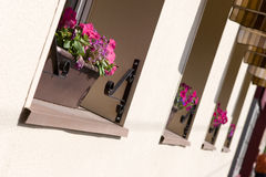 Row of windows with flowers. Flowers in windows of houses Royalty Free Stock Image