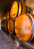 Row of wine barrels Stock Image