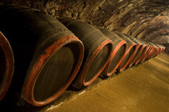 Row of Wine barrels in winery cellar. Row of Old wine barrels are stored in winery cellar near moss-grown wall royalty free stock image