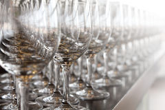 Row of wine glasses. Elegant empty row of wine glasses Stock Photography