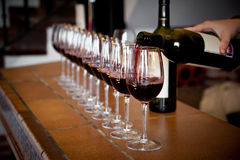 Row of wine glasses for tasting. Hand with wine bottle pouring a row of glasses for tasting Royalty Free Stock Photo