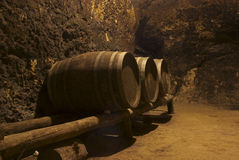 Row of wine tuns on wooden platform underground Royalty Free Stock Photos