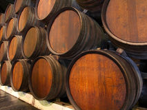 Row of wooden barrels of tawny portwine Stock Photo