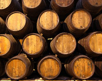 Row of wooden barrels of tawny portwine Royalty Free Stock Image