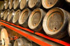 Row of wooden beer barrels Royalty Free Stock Image