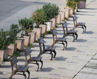 Row of wooden benches in Alghero Royalty Free Stock Photos