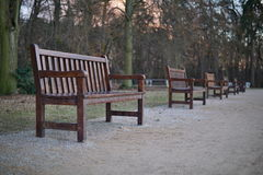Row of wooden benches in park as a symbol of relaxing and having a rest Stock Images