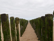 Row of wooden breakwaters on beach. Two row of wooden breakwaters on beach, diminshing perspective Stock Photography