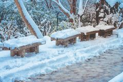 Row of wooden long bench and trees covered white snow after strong snowfall beside walkway at Kiyomizu-dera temple, Kyoto. Row of wooden long bench and trees Stock Photos