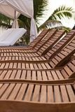A Row of Wooden Lounge Chairs. By a tropical pool Royalty Free Stock Image