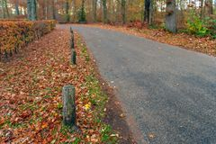 Row of wooden poles in the side of a curved asphalt road through stock image