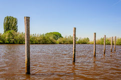 Row of wooden posts in the water. Row of wooden poles in the rippling water of a river on a sunny day in the summer season Stock Photos