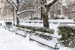 Row of  wooden snow covered benches in winter Sofia Royalty Free Stock Photo
