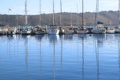 Row of yachts at the harbor Stock Photo