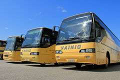 Row of Yellow Buses Royalty Free Stock Images