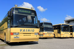 Row of Yellow Coach Buses Royalty Free Stock Images