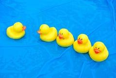 Row of yellow rubber ducks Stock Photo