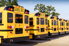 Row of yellow school buses in parking lot rear view. Line of brand new yellow school buses with license plates and branding removed Royalty Free Stock Photo