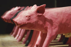 Row of young pigs decoration Royalty Free Stock Photos