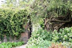 Rowallane trädgårds- nordligt - Irland Arkivbild