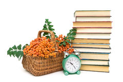 Rowan berries, books and clock alarm clock on a white background Royalty Free Stock Photography