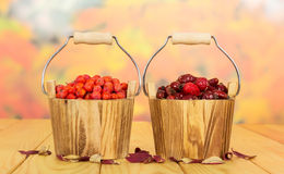 Rowan berries and rose hips in wooden buckets on autumn leaves. Stock Photos