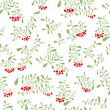 Rowan berry seamless pattern in flat simple style. Doodle floral Stock Photos