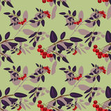 Rowan berry seamless pattern Royalty Free Stock Image