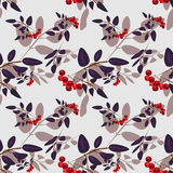 Rowan berry seamless pattern. On light grey background Stock Photography