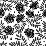 Rowan branch with berries, seamless pattern for Royalty Free Stock Images