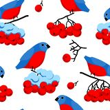 Rowan and bullfinches. Seamless pattern with berries of rowan and bullfinches. Concept of winter season. Good design for textile, wallpaper and wrapping paper vector illustration