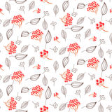 Rowan and leaves seamless white vector pattern. royalty free illustration