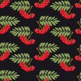 Rowan pattern Stock Photos